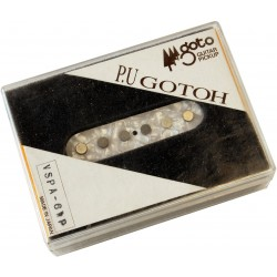 A scottish Legacy: scottish fiddle tunes for acoustic...