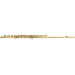 Ernie Ball : Regular Slinky Coated .010-.046 3121