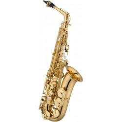 Techgal : Premiumtasche Akkordeon 48/60
