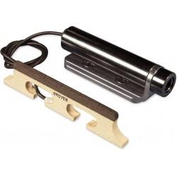 Lenzner : f3 Soloklang Konzertzither