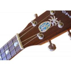 Cort : Akusik-Gitarrencombo AF30