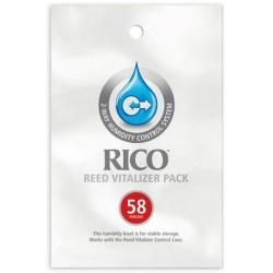 Wise Guys Band 2: für Klavier (mit Texten und Akkorden)