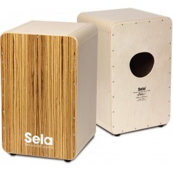 D'Addario Woodwinds : Reed...