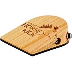 Kompendium der klassischen Gitarre (&2 CD's) für...